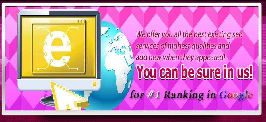 Ridds-Network-Best-SEO-Marketing-Services-Company-India