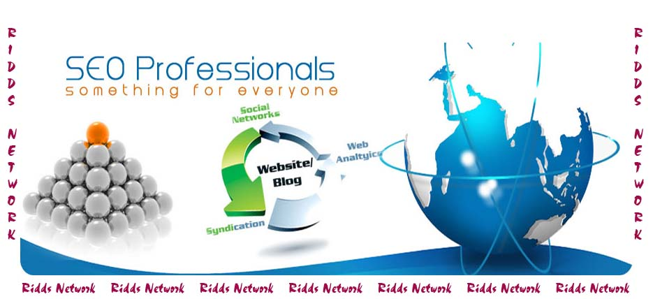 Professional-SEO-Ridds-Network-Delhi-India