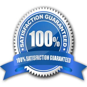 Satisfation-Guaranteed-SEO-Services-Ridds-Network-India