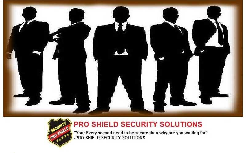 PRO SHIELD SECURITY SOLUTIONS