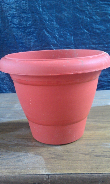 Plastic Pot 1 - Available in 4 sizes