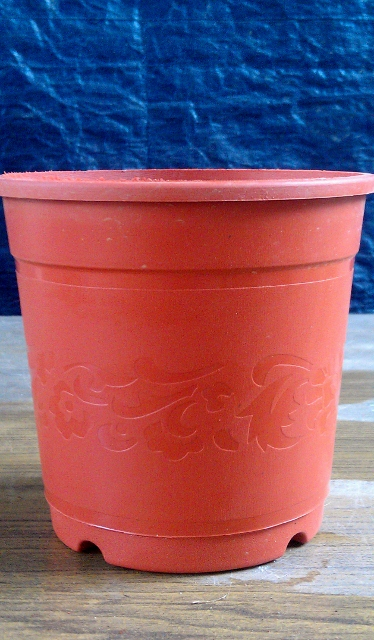 Plastic Pot 2 - Available in 4 sizes