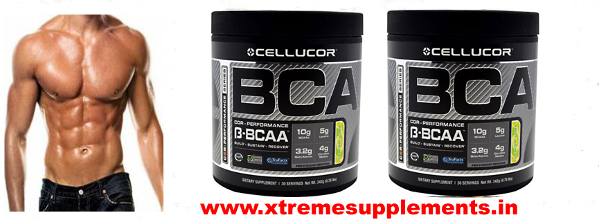CELLUCOR BCA-BCAA PRICE INDIA