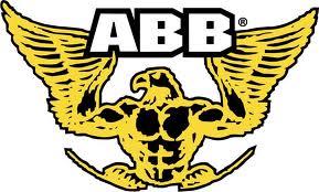 ABB PERFORMANCE INDIA