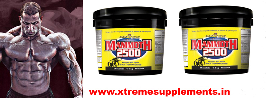 innovative laboratoriesMAMMOTH 2500  INDIA PRICE