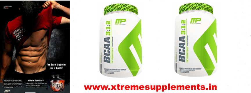 BUY MUSCLE PHARMA BCAA 3:2:1 PRICE INDIA,MUSCLE PHARMA BCAA 3:2:1 PRICE DELHI,BEST PRICE DELHI SUPPLEMENTS SHOP MUSCLE PHARMA BCAA 3:2:1 PRICE