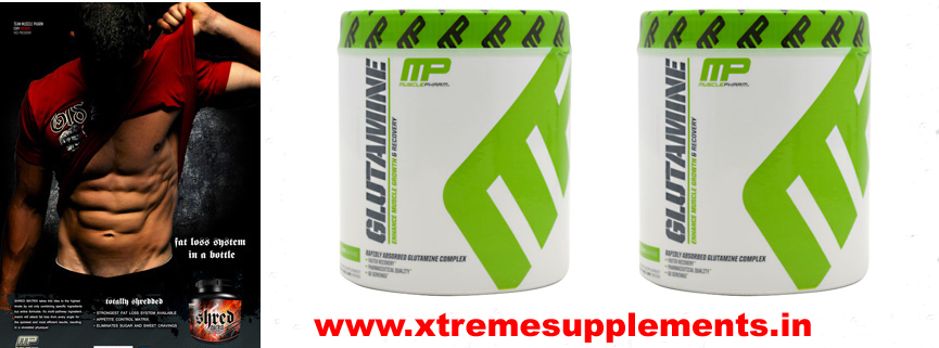 MUSCLE PHARMA GLUTAMINE 300 GMS INDIA PRICE