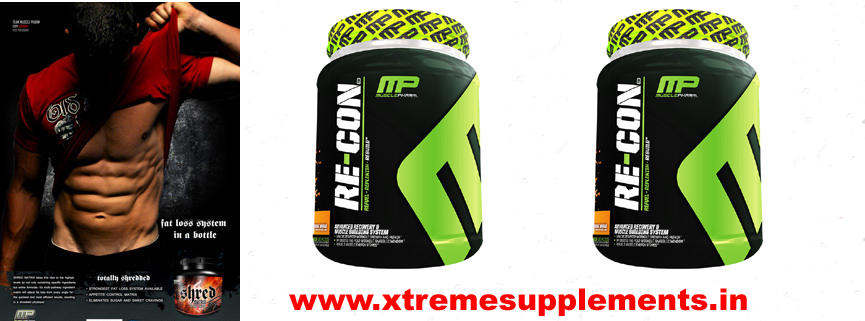 MUSCLEPHARMA RECON INDIA PRICE