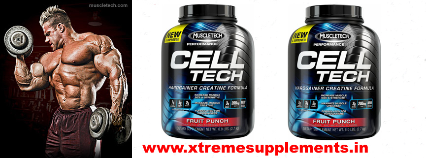MUSCLETECH PERFORMANCE CELLTECH PRICE INDIA DELHI