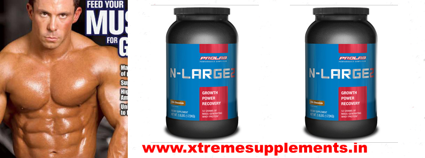 PROLAB N LARGE 2 PRICE INDIA