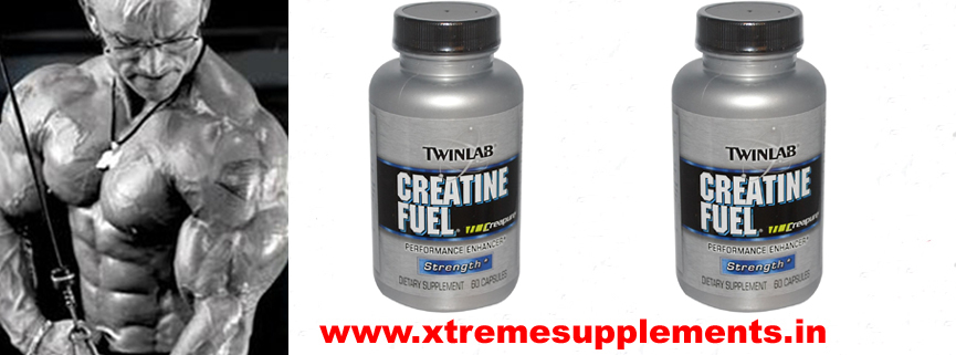 TWINLAB CREATINE FUEL PRICE INDIA
