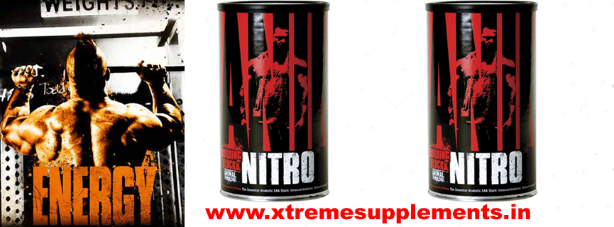 Amino 2002, Amino 2002 gym supplements, Amino 2002 health supplement, Amino 2002 in delhi, Amino 2002 proteins supplements, Buy Amino 2002 in delhi, buy Amino 2002 in east delhi, buy Amino 2002 in Gurgaon, buy Amino 2002 in ncr, buy Amino 2002 in new delhi, buy Amino 2002 in Noida, buy Amino 2002 in south delhi, buy Amino 2002 in west delhi, looking for Amino 2002, purchase Amino 2002, purchase Amino 2002 in delhi, searching for Amino 2002