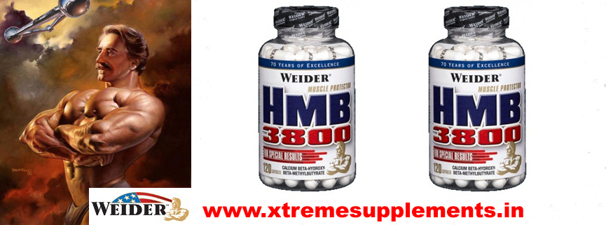 WEIDER HMB 3800 PRICE INDIA